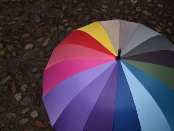 Personal Umbrella Insurance Kirkland, WA