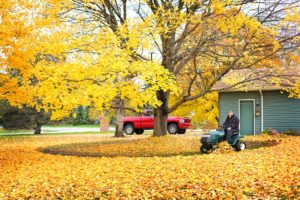 Fall Home Maintenance Checklist for your Bellevue, WA home
